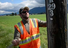 Alamon Utility Pole Inspection