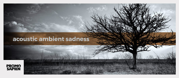 Acoustic Ambient Sadness