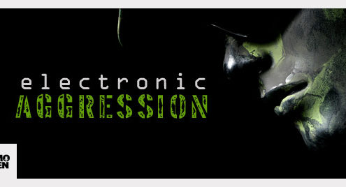 Electronic Aggression