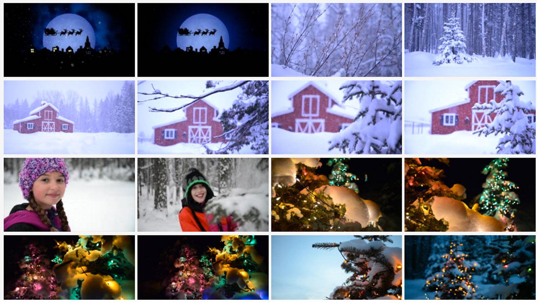 Promo Sapien Winter Stock Footage