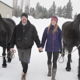 ThetaHealing - Montana Winter